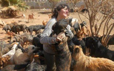 Ingresa en la cárcel la expresidenta de una protectora por maltrato animal
