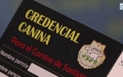 El Camino de Santiago abre puertas a muchos emprendedores