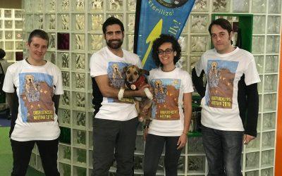 Dogfluencers en ruta